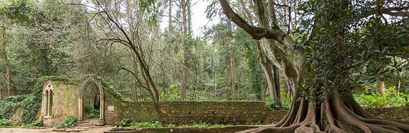 Abertura dos Jardins da Quinta das Lágrimas a 8 de Maio